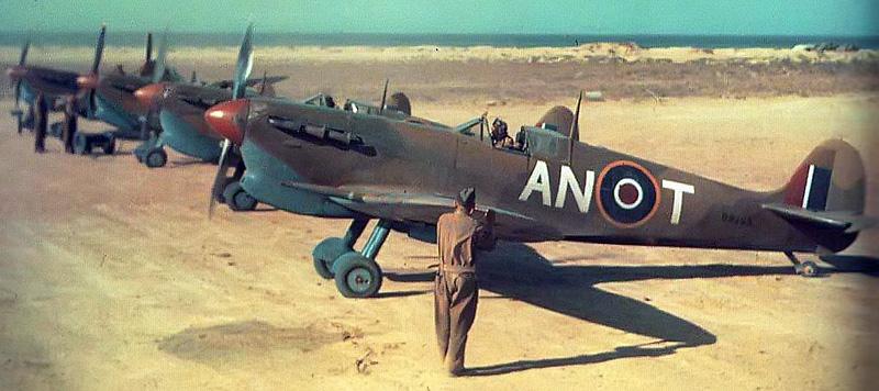 Spitfire North africa